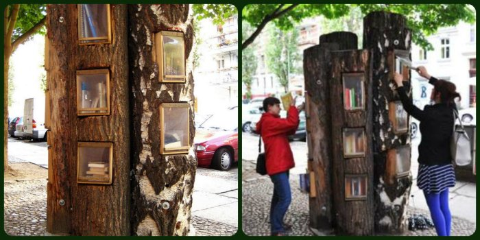 Book Forest 2